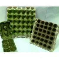 Nano Egg Guard Solution Coated Egg Tray (1 Tray)